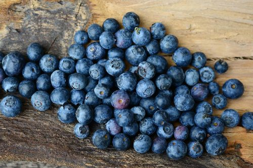 Blueberries for Multiple Sclerosis