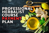 Professional Herbalist Course Payment Plan