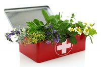 Herb First Aid Kit