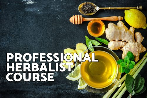 Professional Herbalist Course