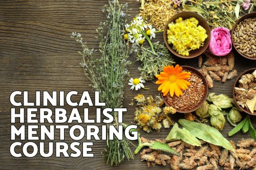 Clinical Mentoring Herbalist Course