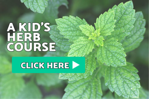 Kid's Herb Course