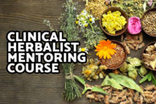 Clinical Herbalist Mentoring Course