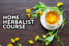 Home Herbalist Course