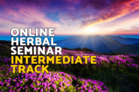 Online herbal seminar intermediate track