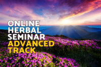 menu-online-seminar-advanced