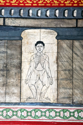Ancient acupuncture illustration