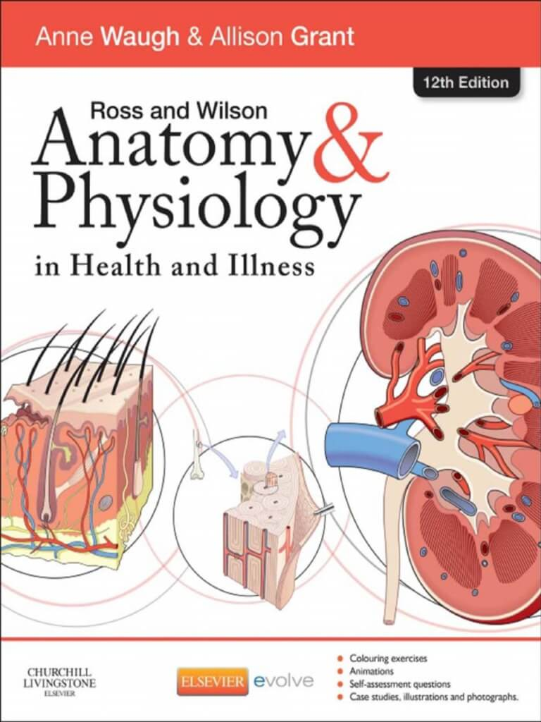 Purchase The Anatomy And Physiology Course East West School Of