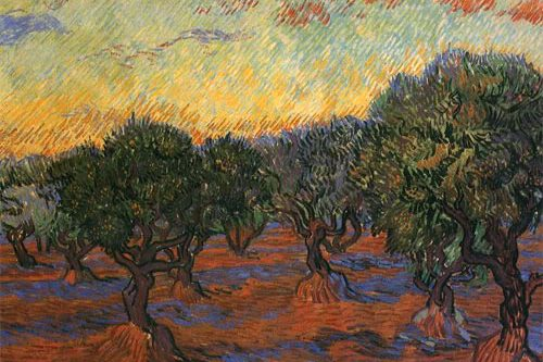Olive Grove at Sunset by Vincent van Gogh