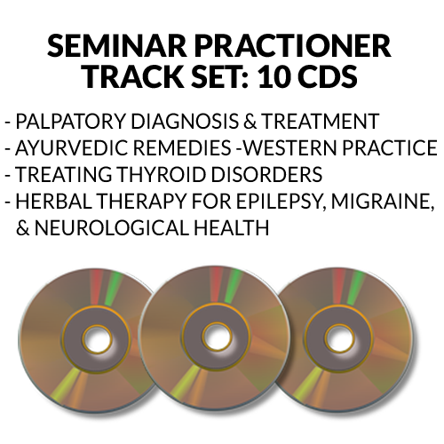 Practioner Track Seminar Audio