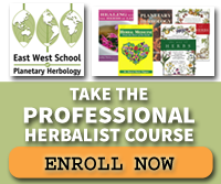 Take the Professional Herbalist Course